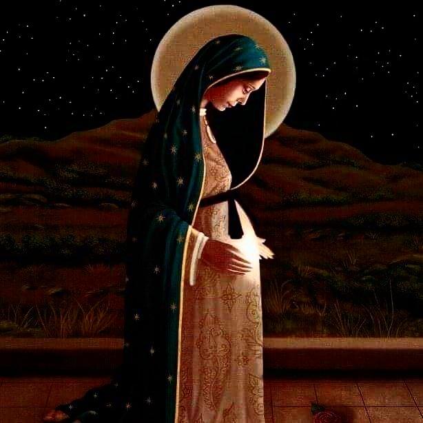 Santa Maria, insegnaci a generare vita e amore
